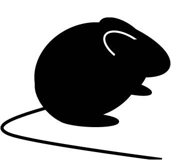 マウス-02.jpg